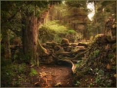 """from the series """"Walks in Portugal"""". Sintra. (odinvadim) Tags: mytravelgram iphoneart iphone iphoneography iphoneonly forest specialist snapseed portugal textures painterlymobileart travel textured landscape"""