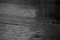 Rainy day - Regentag (b_kohnert) Tags: bw blackandwhite monochrome schwarzweis regen rainyday