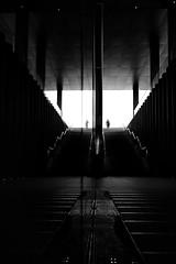 Back to your own world (Birdhouse camper) Tags: copenhagen denmark reflection silhouette scale stairs blackandwhite blackwhite fujifilm fuji xt2 fujixt2 street