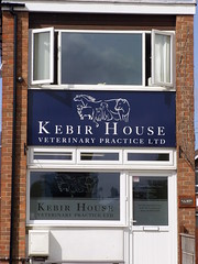 Etchings (Glass Horse 2017) Tags: nyorks northallerton veterinarypractice windows windowwednesday etchings sign outlines animals etchedglass kebirhouse