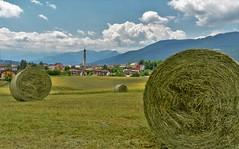 Lavori nei campi (maurizio.pretto) Tags: work lavori campi fields prati lawns montagna mountains asiago