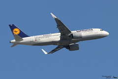 Airbus A320 -271N LUFTHANSA D-AINC 6920 Francfort mai 2018 (Thibaud.S.) Tags: airbus a320 271n dainc 6920 francfort mai 2018 lufthansa firsttoflya320neo sticker