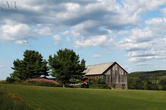 Grange, Témiscouata, QC (Eve-Marie Roy) Tags: evemarieroy costard ferme farm grange barn cabane shack bâtiment building village rurale rural campagne country countryside old quebec canada temiscouata