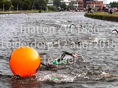 Triatlon ZVL-1886 Leiderdorp 12 aug. 2018 1e deel  nr 2.jpg (waterpolo photos) Tags: 2018 leiderdorp dezijl zvl1886 12aug2018 swimming zwemmen river sport triatlon rivier triathlon nederland netherlands