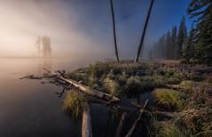 Frozen morning (Juliocastrofoto) Tags: morning sunrise river fog