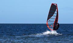 he's up! (scott1346) Tags: windsurfing board water ocean wind sail leisure sport transportation sky colors orange black wetsuit 1001nights 1001nightsmagiccity canont3i autofocus