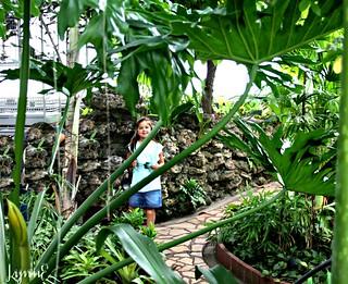 Conservatory Fun