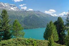 Lake Silvaplana (Bephep2010) Tags: 2017 77 alpen alpha berg engadin frühling graubünden grisons himmel lakesilvaplana landschaft sal1650f28 slta77v schnee schweiz see silvaplana silvaplanersee sony switzerland wald alps forest lake landscape mountain sky snow spring ch