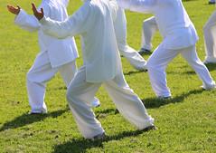 Tai chi (mghresearchinstitute) Tags: taijiquan tai chi taichi martialart position wushu people follower fan silk concentration relaxation chinese chen yang dress person sport arts art martialarts health woman kungfu