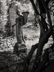 20180518-0255-Edit (www.cjo.info) Tags: 19thcentury 19thcenturyneogothic bw england europe europeanunion highgate highgatecemetery highgatecemeteryeast london m43 magnificent7 magnificentseven magnificentsevengardencemeteries microfourthirds nikcollection olympus olympuspenfgzuikoautos40mmf14 olympuspenf penfmount silverefexpro silverefexpro2 unitedkingdom victoriangothic westerneurope againstthelight angel animal architecture art blackwhite blackandwhite blur bokeh carving cemetery classiclens contrejour death decay digital fauna flora focusblur girl gothic gothicrevival gravegraveyard legacylens manualfocus monochrome mythicalcreatures overgrown people plant sculpture shallowdepthoffield statue stone stonework tree victorian wing wingedcreature woman wood wooded