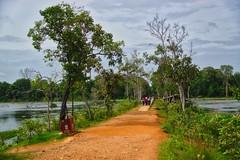 Path to Neak Pean temple ruins through the Jayataka baray in Angkor Archeological Park near Siem Reap, Cambodia (UweBKK (α 77 on )) Tags: angkor archeological park history ancient temples historical siemreap siem reap cambodia southeast asia sony alpha 77 dslr slt path neakpean neak pean jayataka baray lake trees