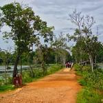Path to Neak Pean temple ruins through the Jayataka baray in Angkor Archeological Park near Siem Reap, Cambodia thumbnail