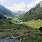 Haute vallée d'Ossau, Béarn, Pyrénées Atlantiques, Aquitaine, France. thumbnail