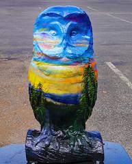 """Sleepy Owl Sunset"" (dr.tspencer) Tags: tamron16300mm coxsackieowls coxsackieny coxsackie owl hudsonvalley hootoftheowl whatahoot greenecounty"