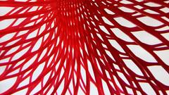 DSC03830P (Scott Glenn) Tags: macromondays mesh red closeup