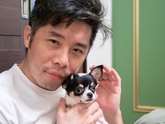 小嘟嘟 04 (enno7898) Tags: pet puppy f28 1240mm mzuiko olympus g9 lumixg9 lumix panasonic