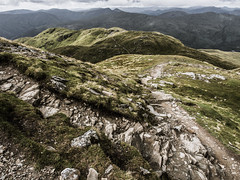 Rocky Path - Ben Lomond August 2018 (GOR44Photographic@Gmail.com) Tags: ben lomond loch hills mountains scotland stirling argyll munro path olympus omdem5 1240mmf28 green gor44 grass rocks mist cloud