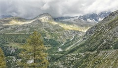 Ray of sunshine below the Weisshorn glacier (Peter Goodair) Tags: