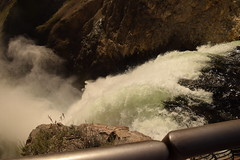 _DSC0504 (alnbbates) Tags: august2018 yellowstonetrip yellowstonenationalpark yellowstoneriver lowerfalls grandcanyonoftheyellowstone