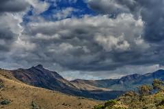 Pico do Chorão (mcvmjr1971) Tags: vermelho parque estadual da serra do papagaio baependi minas gerais brasil pouso mãe douro trilha para o pico chorão nikon d7000 mmoraes viagem travel trekking 2018