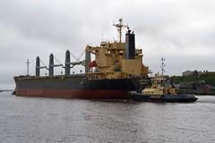 S-Bronco.. Tyne 210818 (silvermop) Tags: ship boats ships sea bulkcarriers bulkers port river tyne sbronco