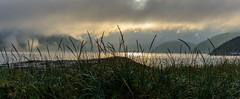 _D804952-Pano.jpg (David Hamments) Tags: tadoussac sunset panorama gaspepeninsula quebec whale trail fog