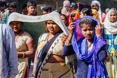 Seeking Shade Under Saris, Vrindavan India (AdamCohn) Tags: adamcohn hindu india vrindavan crowd holi pilgrim pilgrimage pilgrims saree sarees sari saris होली
