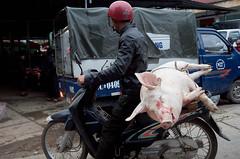 Fleischlieferung (Photoauge.) Tags: vietnam vnm geo:lat=2327643590 geo:lon=10536121200 geotagged thịtrấnđồngvăn market markt