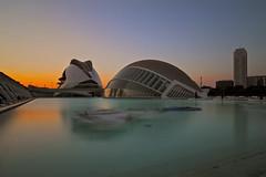 """Città dell'arte e della scienza Valencia (""""Marco50"""" Marco Mattei) Tags: da fare calatrava architettura zeiss distagon t zeissdistagont2821ze leefilter"""