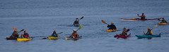 Kayakers early morning paddle (D70) Tags: trincomalichannel britishcolumbia canada kayakers early morning paddle sigma 150600mm f563 contemporary tc1401 teleconverter nikon d750 ƒ85 7000mm 13200 1600