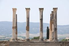 2018/07/09 12h43 capitole (Volubilis) 02 (Valéry Hugotte) Tags: 24105 antiquité maroc volubilis canon canon5d canon5dmarkiv capitole colonnes romain ruines fèsmeknès ma