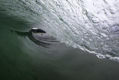 Green Room (Omnitrigger) Tags: surf wave tube barrel greenroom pacific beach beachbreak