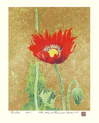 Opium poppy (Japanese Flower and Bird Art) Tags: flower opium poppy papaver somniferum papaveraceae yukio katsuda modern screenprint print japan japanese art readercollection