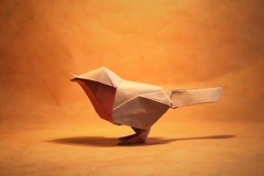 Robin - David Brill (pierreyvesgallard) Tags: origami robin david brill bird paper folding craft animal