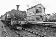 GWR 6430  Northampton @ Lamport (keith.doubleday) Tags: station pitsfordbrampton 060 steam tank pannier gwr railway northamptonlamport