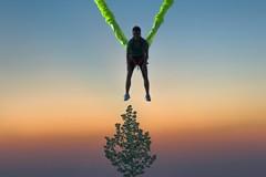 (Kirill Dorokhov) Tags: contemporaryart sunset minimalism landing ropes tree skies gradients