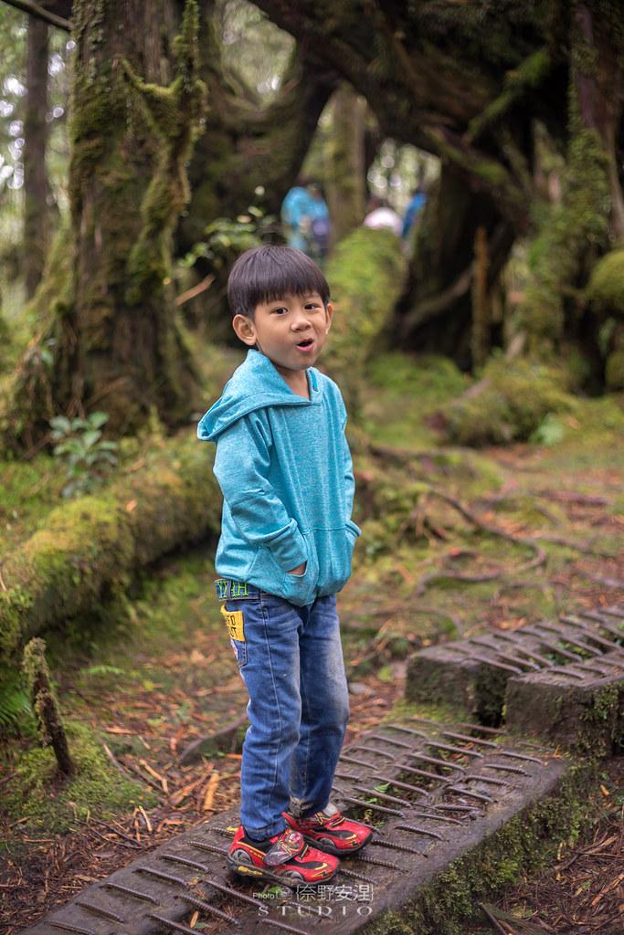 太平山翠峰湖環山步道 |走在泥濘的道路上,只為途中美景 | 宜蘭大同鄉34