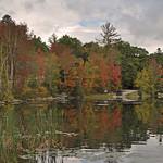 USA - Vermont - Fall Reflections thumbnail