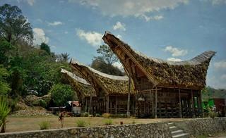 INDONESIEN; SULAWESI, Tanah Toraja , in Lemo,  hist. tongkonans und Reisspeicher , 17626/10635