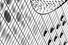 Elli (tan.ja1212) Tags: elbphilharmonie hamburg hamburgerhafen schwarzweis architektur konzerthaus kulturdenkmal fassade dach facade roof glas fenster windows