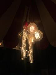 Filament of Bulbs (Rashid Jorvee) Tags: filament bulbs jorvee