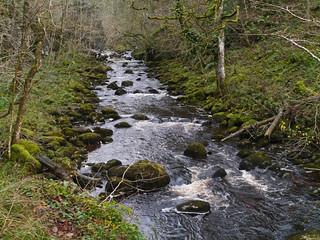 River Twiss, Swilla Glen, Ingleton
