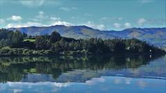 Barry's Bay, Banks Peninsula, New Zealand (Steve Attwood) Tags: auldwoodphotography steveattwood newzealand canterbury bankspeninsula landscape sea ocean harbour coast reflection barrysbay