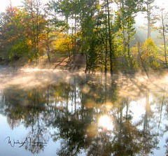 Sun, Fog and Fall (Catch the Moment Photography) Tags: landscapephotography landscapes bowienaturepark fall fallcolors fog wadehooperphotography water autumn lakevan sun scenic trees tennessee reflection fairview daybreak fallleaves