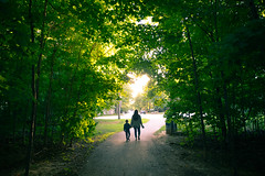 Natural Walks (cookedphotos) Tags: mississauga canon 5dmarkiv streetphotography nature trees forest woman girl boy child path sunlight love 365project p3652018