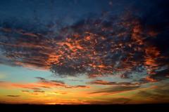 Fogo Morto (Eduardo Amorim) Tags: pôrdosol poente entardecer poniente atardecer sunset tramonto sonnenuntergang coucherdesoleil crepúsculo anoitecer pelotas costadoce riograndedosul brésil brasil sudamérica südamerika suramérica américadosul southamerica amériquedusud americameridionale américadelsur americadelsud brazil eduardoamorim