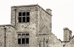 HARDWICK OLD HALL, DERBYSHIRE_DSC_1892_LR_2.5 (Roger Perriss) Tags: hardwickpark oldhall d750 stonework ruin blackandwhite hardwickhall windows oldstonework rough monochrome stone mortor masonry walls