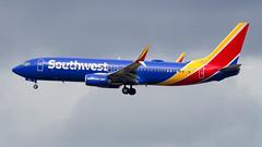 Boeing 737-8H4(WL) N8519R Southwest Airlines (William Musculus) Tags: seattle tacoma seatac sea ksea airport spotting international burien washington étatsunis us n8519r southwest airlines boeing 7378h4wl 737800 swa wn