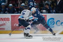 HKNitra_vs_HKPoprad (veronikaneirurerphoto) Tags: hknitra hknitrafans hkpoprad poprad nitra slovakia tipsportextraliga tiposportliga icehockey icehockeyphotography sportsphotography sports
