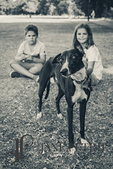 Leake Family (24 of 29) (JPetriePhotography) Tags: emilyleake famiyshoot dog janepetriephotography kent kids park photographer tunbridgewells work